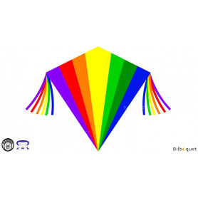 Eddy Rainbow 75x75cm - Cerf-volant monofil enfant