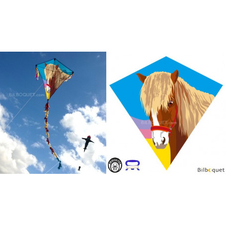 Eddy Poney 75x75cm - Cerf-volant monofil enfant