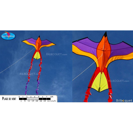 Perroquet tropical violet-jaune - Cerf-volant monofil