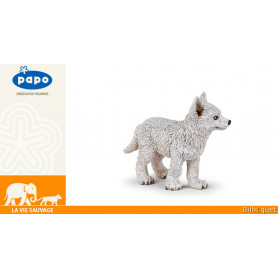 Jeune loup polaire - La vie sauvage