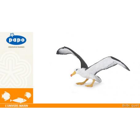 Albatros - L'univers marin