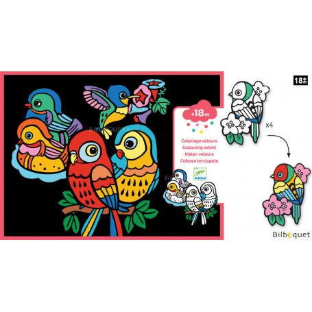 Coloriage Velours - Bébés oiseaux - Petits Cadeaux