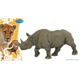 Rhinocéros noir