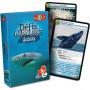 Animaux marins - Défis Nature - Jeu de cartes