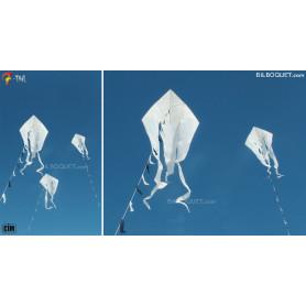 Cerf-volant monofil F-Tail blanc