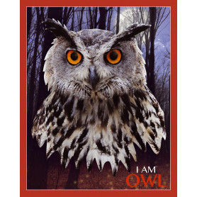 Owl Shaped Jigsaw Puzzle - 550 pièces