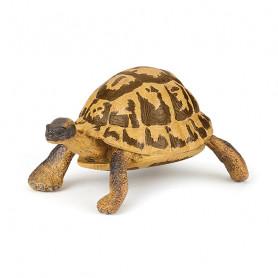 Hermann's Tortoise - Papo Figurine