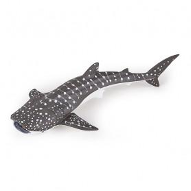 Jeune requin baleine - Figurine Papo