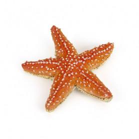 Étoile de mer - Figurine Papo