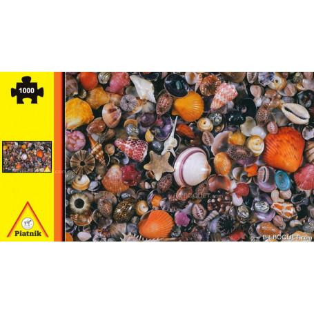 Puzzle Casse-tête Coquillages 1000 pièces