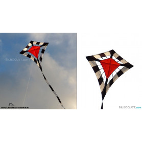 Eddy Duo Cerf-volant monofil par Christoph Fokken