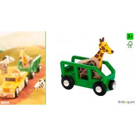 Wagon girafe