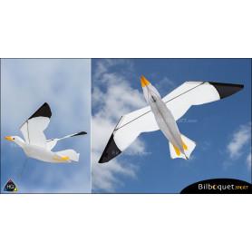 Cerf-volant monofil Mouette 3D - Joel Scholz